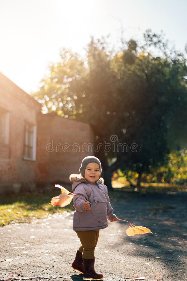 Little toddler girl in autumn park with yellow leaves royalty free stock photo