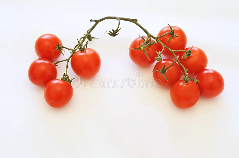 Download Little Tomatoes On White Background Stock Image - Image of still, eating: 29051137