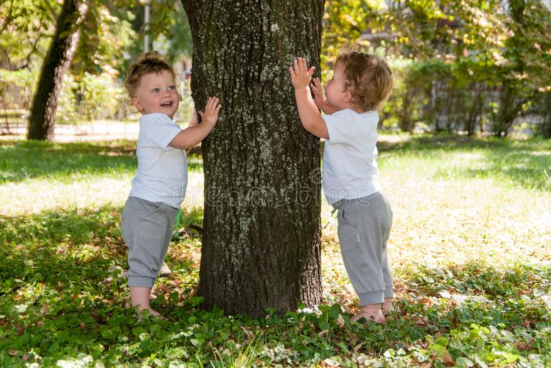 Little twins, curly boys in white T-shirts, hugging a tree stock image