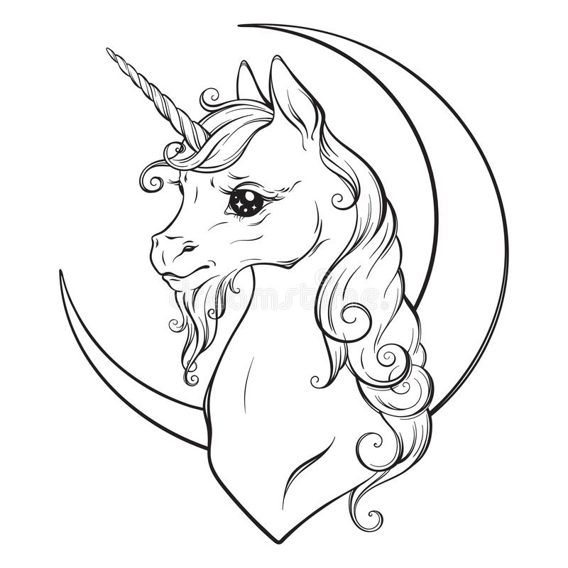 Little unicorn and crescent moon isolated vector illustration. Coloring book pages for adults and kids vector illustration