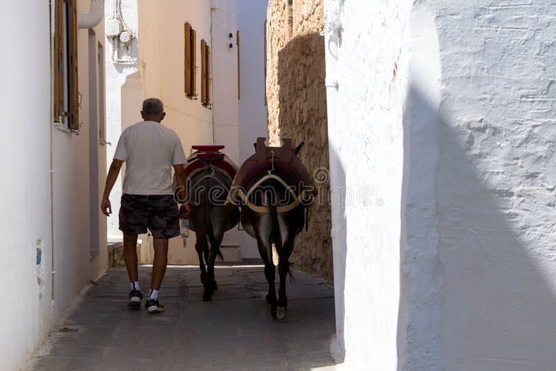 Lindos Streets, donkeys stock photography