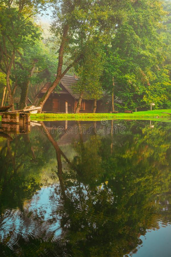 Little wooden house near water in forest stock photos