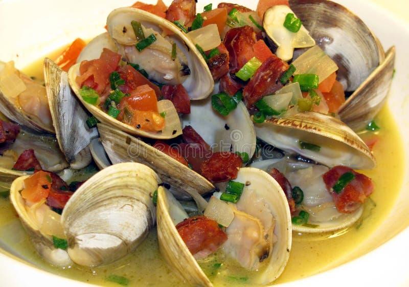 littleneck clams стоковое изображение