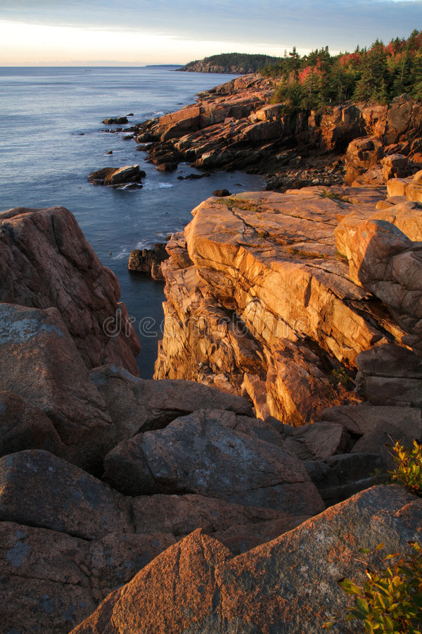 Littoral d'Acadia image stock
