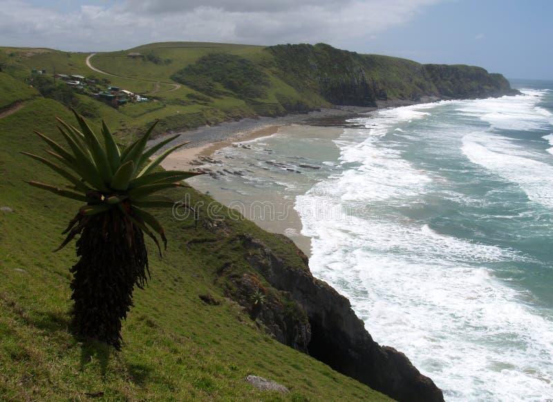 littoral de l'Afrique du sud images libres de droits
