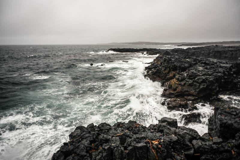 Littoral de l'Islande, vagues frappant les roches volcaniques photo libre de droits