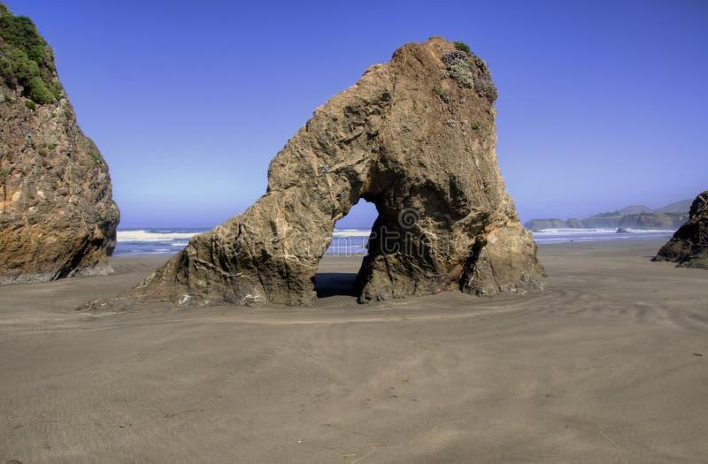 Littoral de la Californie photo libre de droits