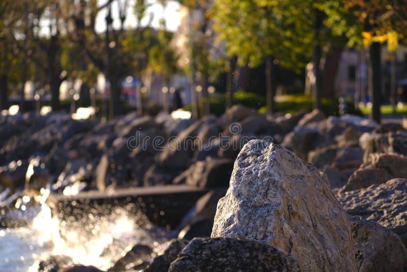 Littoral, roches et eau, arbres photos libres de droits