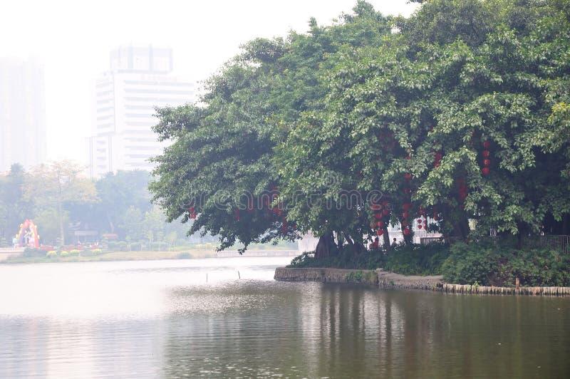 Liuhua lake park scenery stock photography