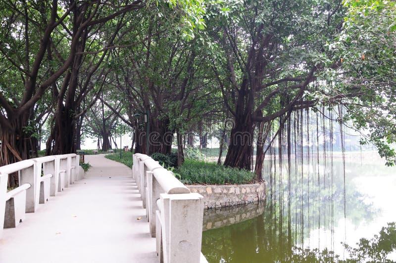 Liuhua lake park scenery stock image