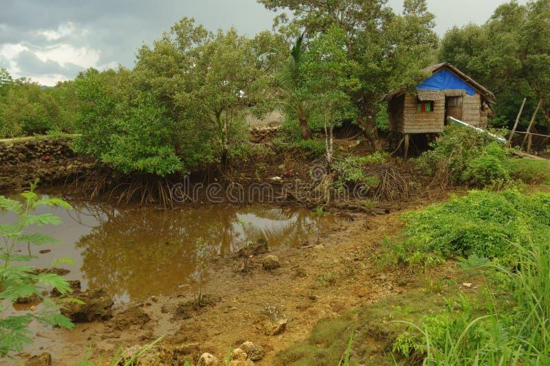 Liv i den filippinska bygden royaltyfria bilder