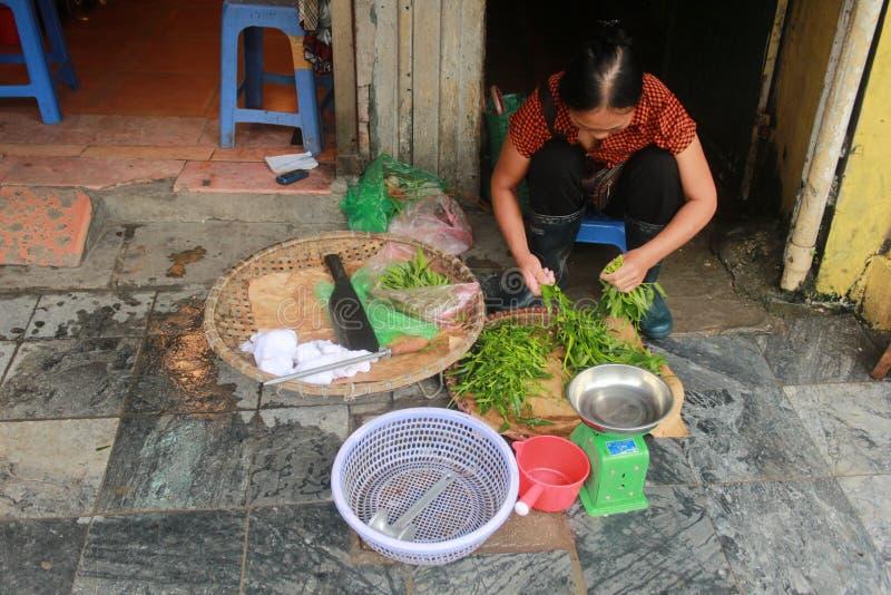 Liv i gatorna av Hanoi royaltyfri bild