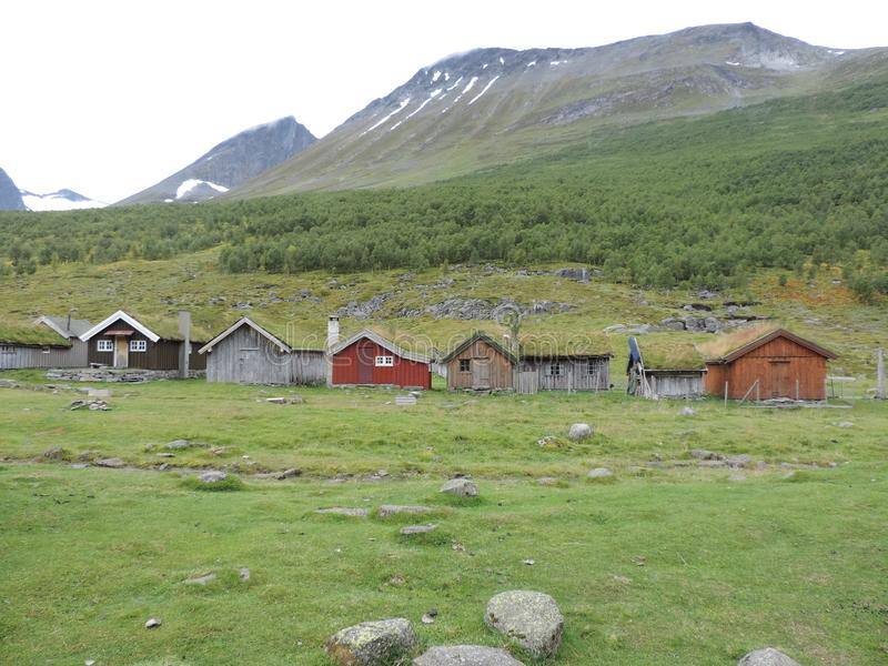 Liv i Geiranger, Norge arkivbild