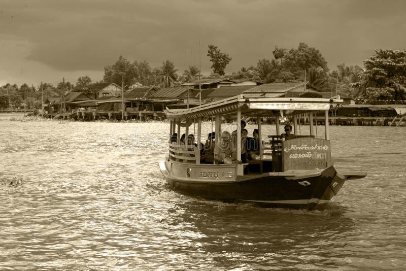 Liv på floden arkivbilder