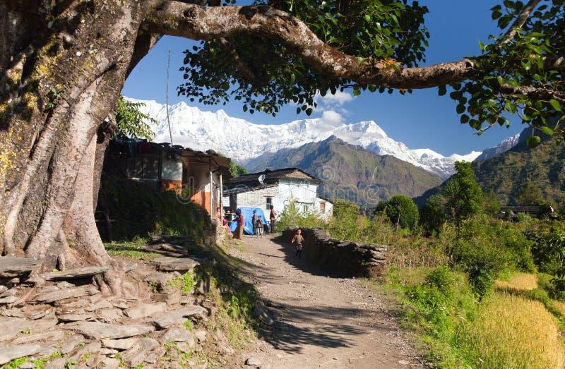Liv under himalayas - himal Dhaulagiri royaltyfri fotografi