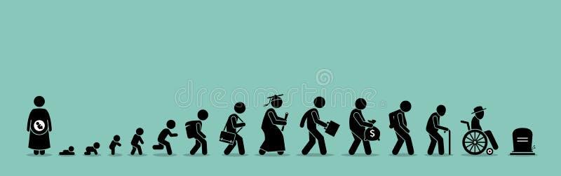 Livcirkulering och åldrasprocess stock illustrationer