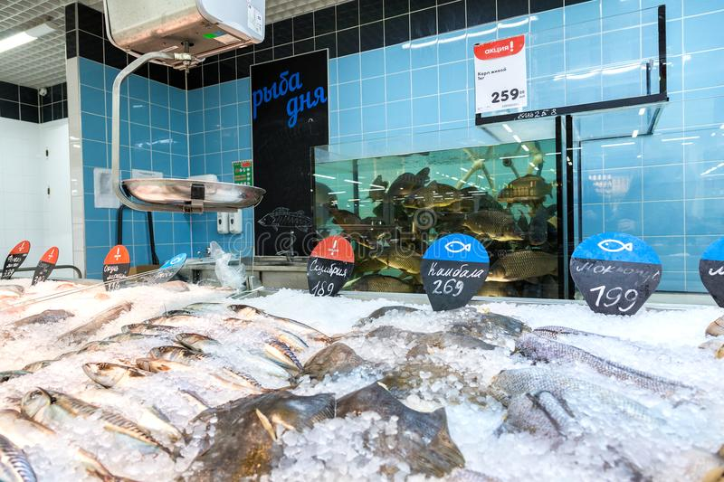 Live and frozen fish ready for sale in the supermarket. Samara, Russia - February 23, 2018: Live and frozen fish ready for sale in the supermarket Karusel. One stock photo