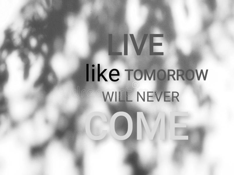 Live like tomorrow will never come. Quote on beige wall with shades of the tree. Quote for life stock image