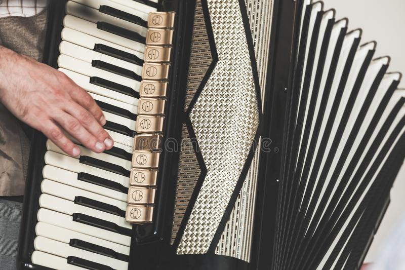 Live music background. Accordionist royalty free stock image