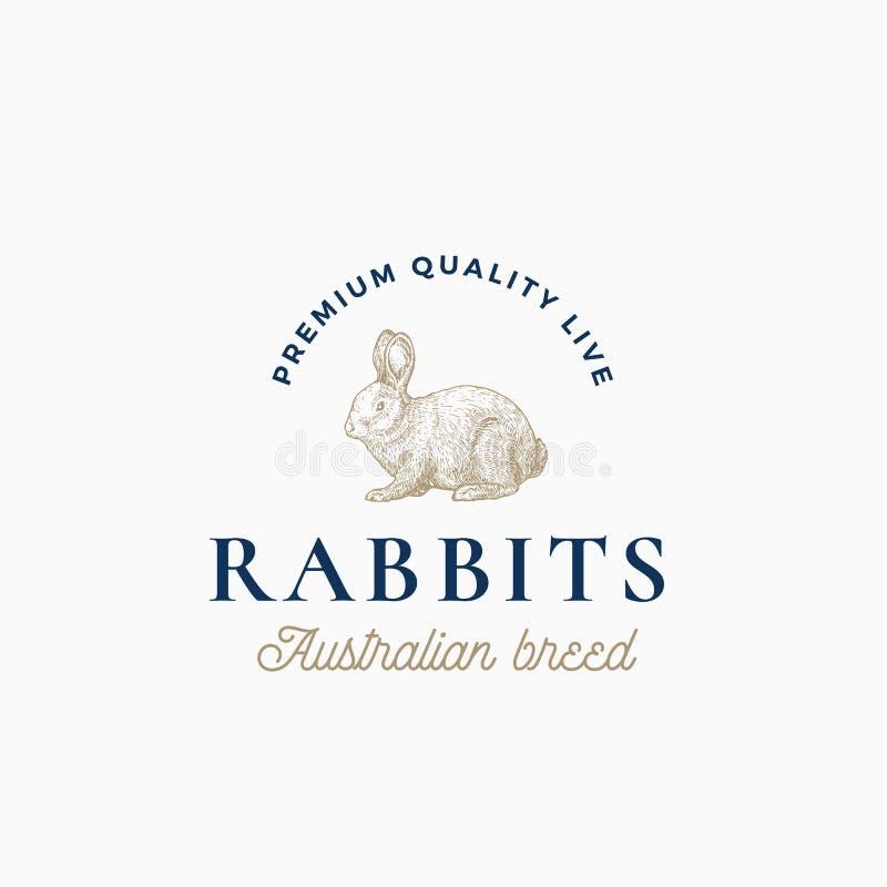 Live Rabbits Australian Breed Signe, symbole ou Logo Template abstrait de vecteur Lapin tiré par la main de style de gravure illustration de vecteur