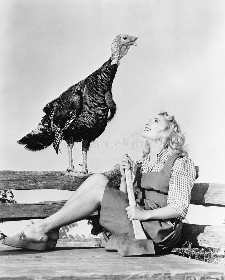 Live turkey and woman with axe stock images