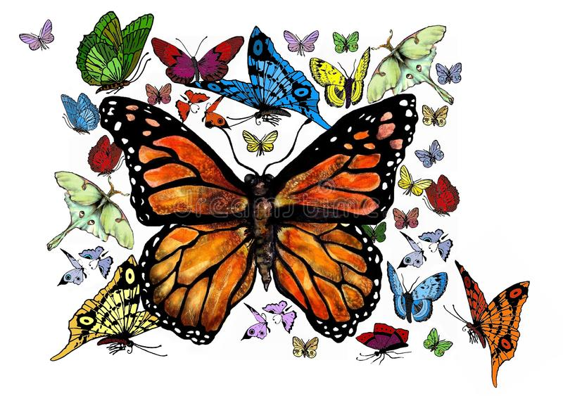 deviantart logo clipart butterfly png - clipart flowers and butterflies  border PNG image with transparent background | TOPpng