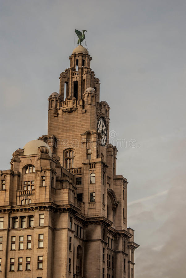 The Liver Building stock image