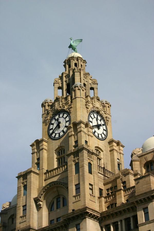 Download Liver Buildings stock photo. Image of birds, work, office - 471586
