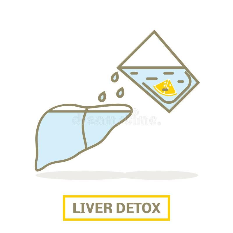 Liver detox concept. Concept of liver detox. Lemon water filling up the liver royalty free illustration