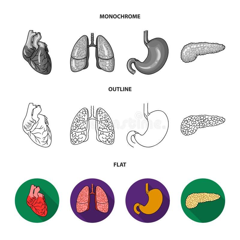 Liver, gallbladder, kidney, brain. Human organs set collection icons in flat,outline,monochrome style vector symbol vector illustration