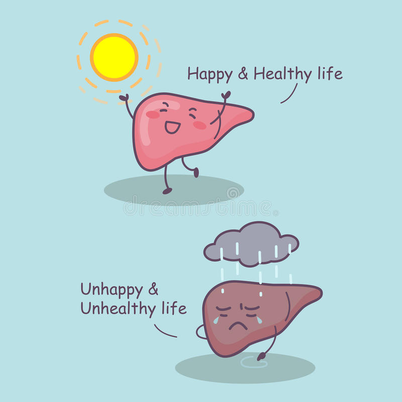 Liver happy and healthy life. Cute cartoon liver happy and healthy life, great for health care concept stock illustration