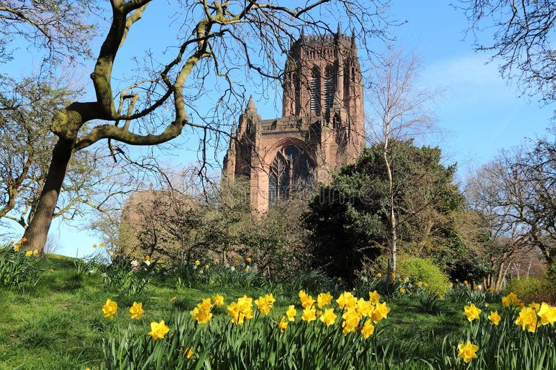 Liverpool cathedral royalty free stock photos