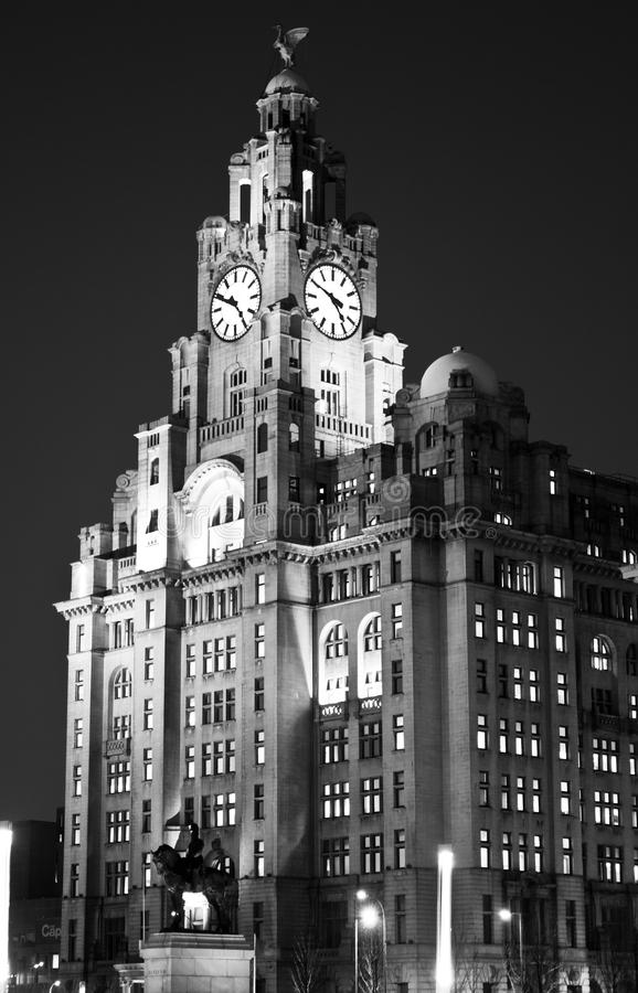 Liverpool Liverbuilding svart & vit royaltyfri bild