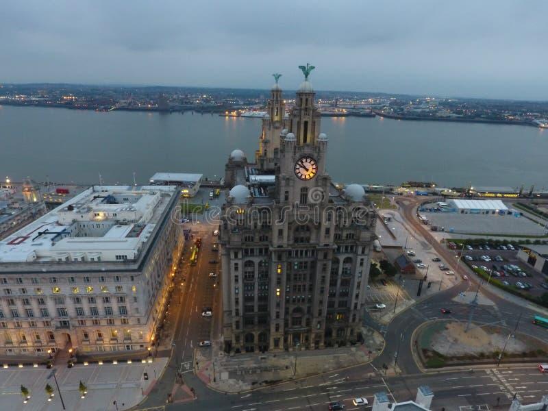 Liverpools Liverbirds стоковое фото