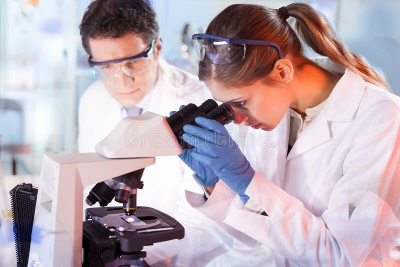 Livforskare som forskar i genetiskt laboratorium royaltyfria bilder