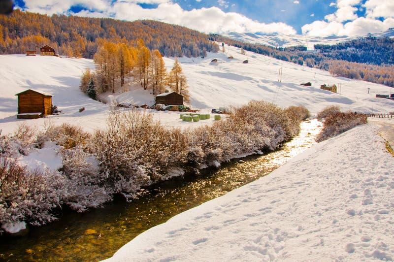 Livigno in winter. Country of Livigno in winter landscape stock photography