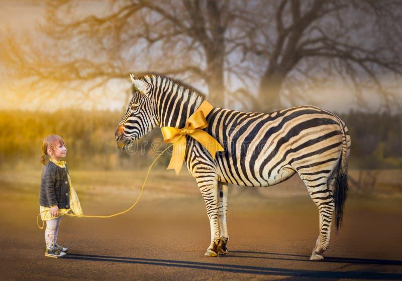 Living gift. Little girl walking with her pet zebra
