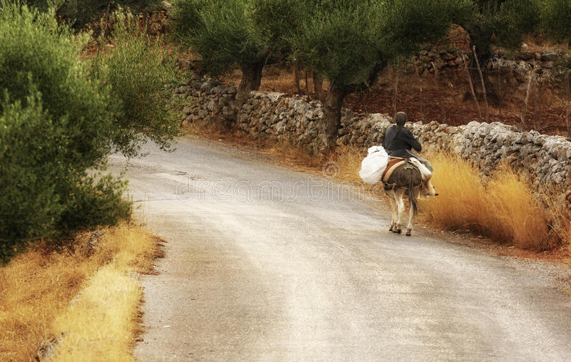 Living in Mani. An old lady riding a donkey along a country road in Mani, southern Greece royalty free stock images