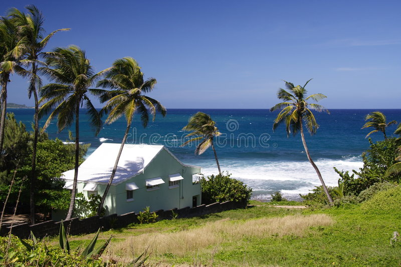 Living In Paradise Stock Photography