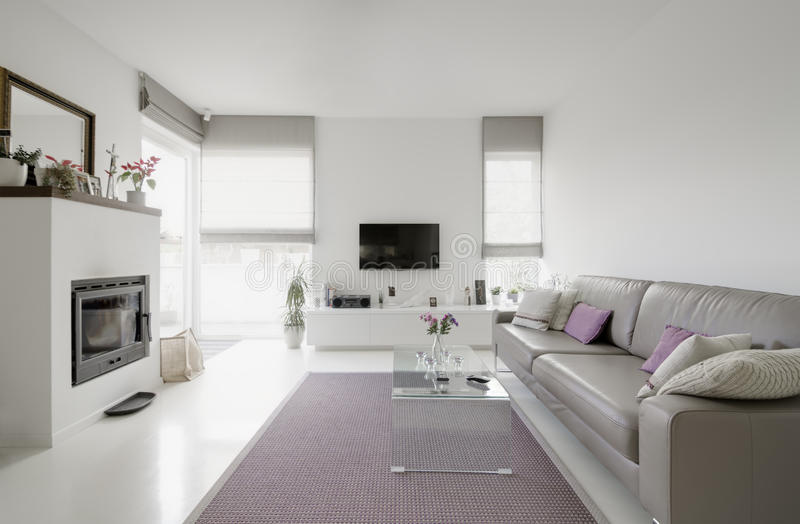 Living room. Image of modern living room with taupe sofa royalty free stock photography