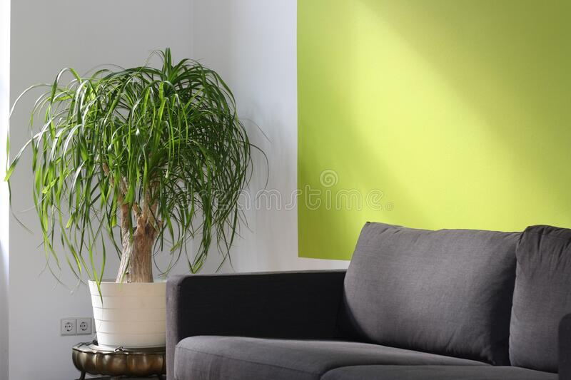 Living room interior stock image