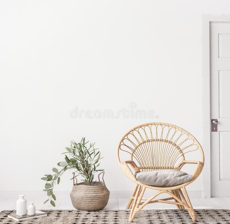 Free Living Room Interior With Wicker Armchair And Eucalyptus Plant, White Wall Mock Up Background Royalty Free Stock Photo - 193466825