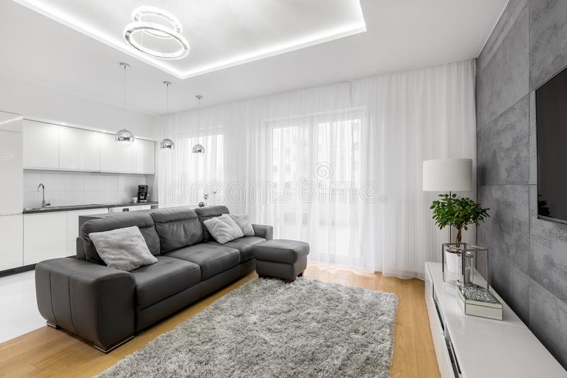 Living room with leather sofa stock image