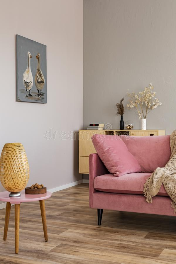 Living room in neutral colors with accents of pink and wood. Living room in neutral colors with accents of pink royalty free stock images