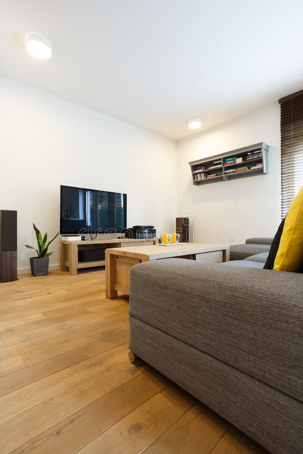 Living room with white walls. Living room with wooden floor, white walls and couch stock photo