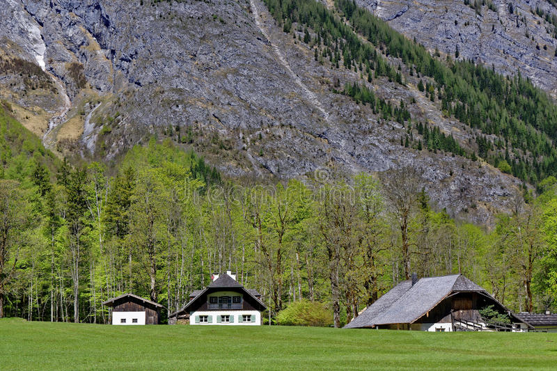 Living secluded high alpine. Country life: Farmhouse and buildings secluded in the Bavarian Alps. Picture taken in spring royalty free stock photo
