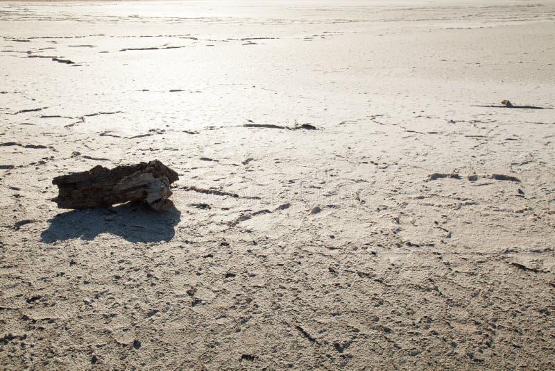 Livlös ökentorkajord utan vatten n royaltyfri foto
