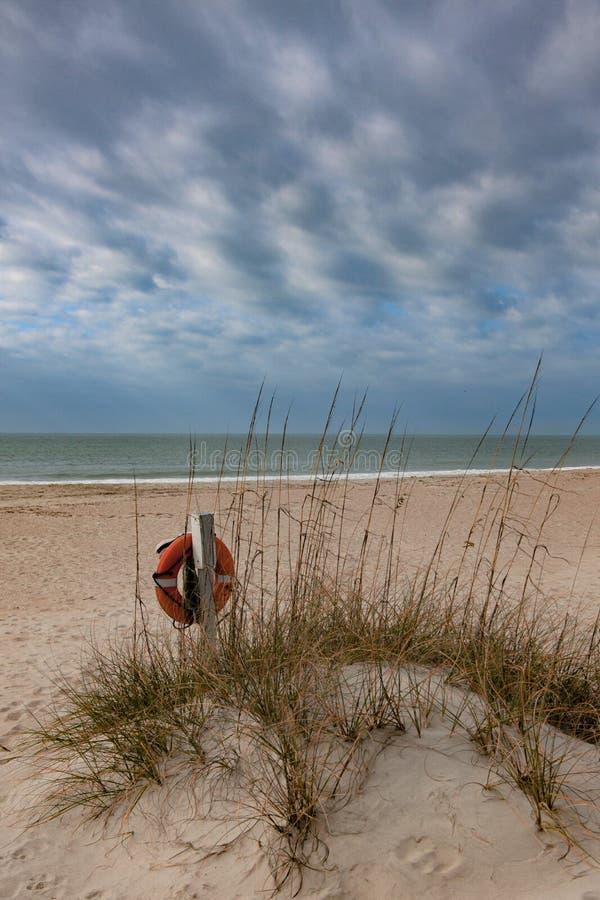 Livpreserver på en strand royaltyfri fotografi