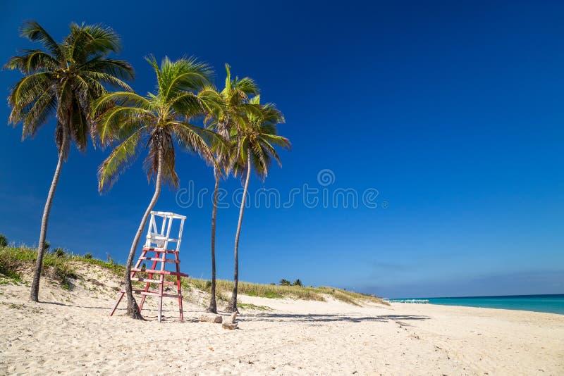 Livräddarestol under palmträd på en paradisstrand arkivbilder