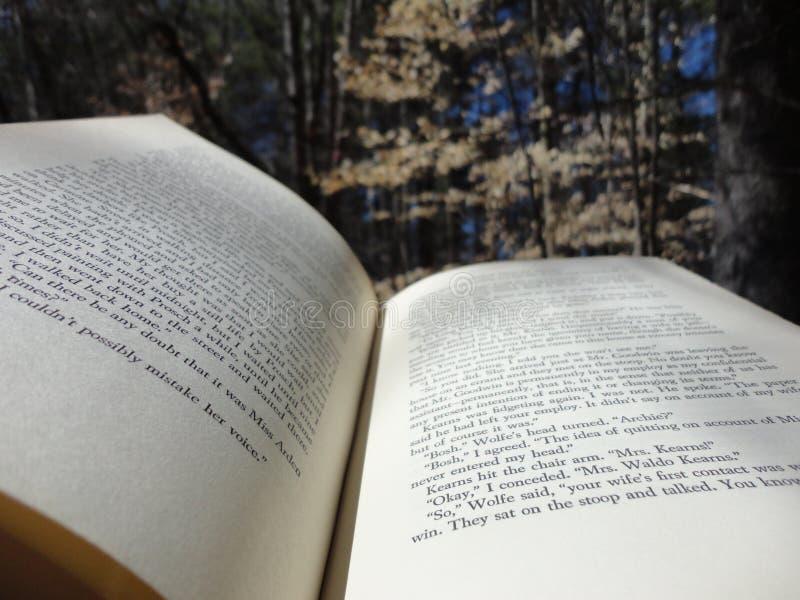 Livre dans les bois photographie stock